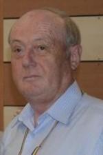 Vasile Vulpaşu
